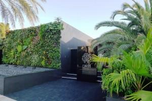 Cavalli Ibiza entrada