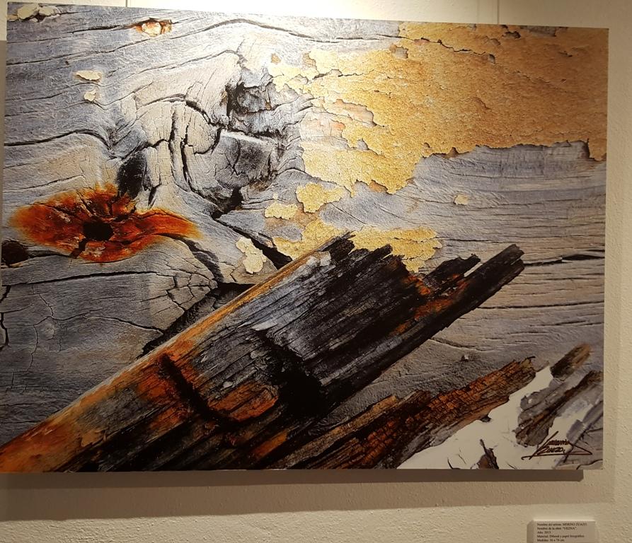 Exposiciones de arte en Ibiza