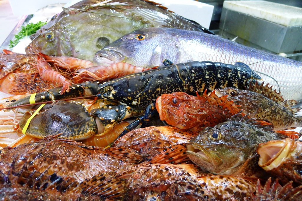 pescados de roca de Ibiza