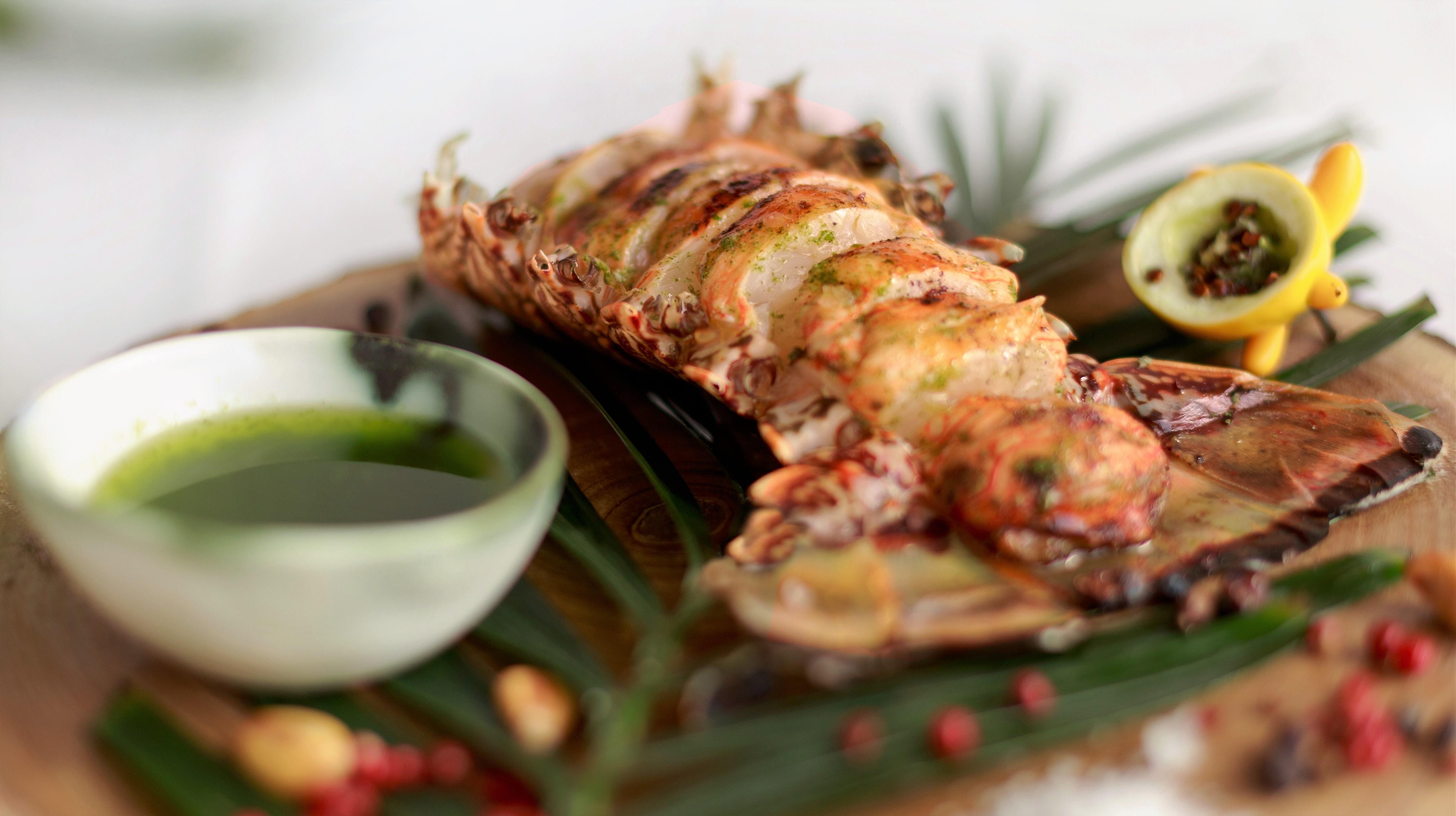 Anticucho de langosta con mojo, cilantro y lima